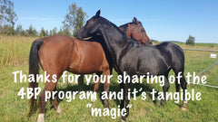 """Thanks for your sharing of the 4BP program and it's tangible """"magic"""""""