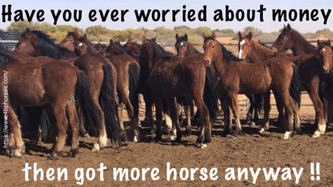 Have you ever worried about money then got more horses anyway!!!