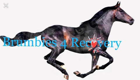 Brumbies 4 Recovery horse