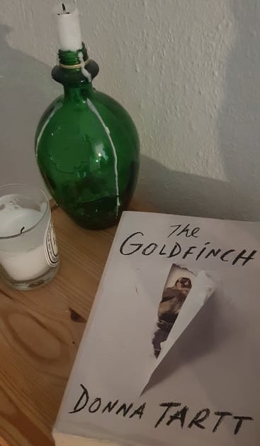 The Goldfinch Dark Academia book