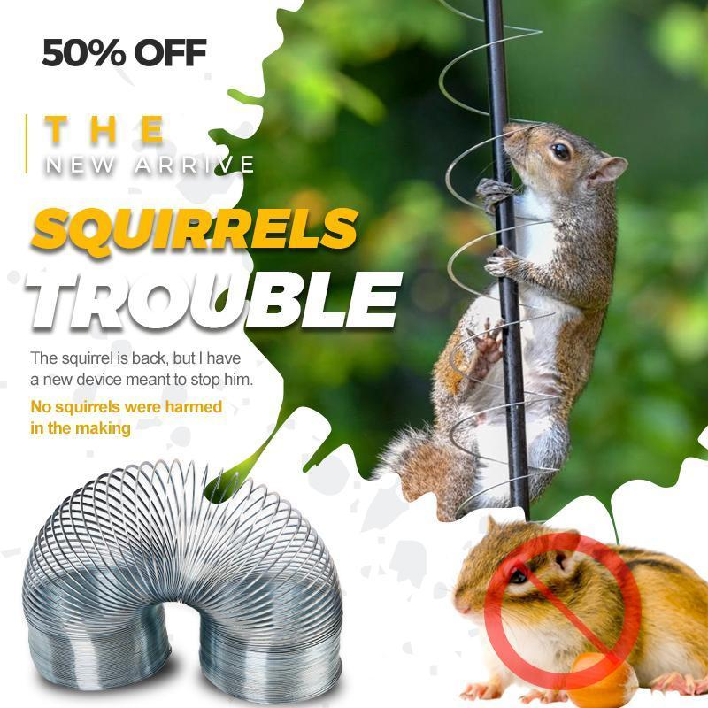 Squirrels Trouble