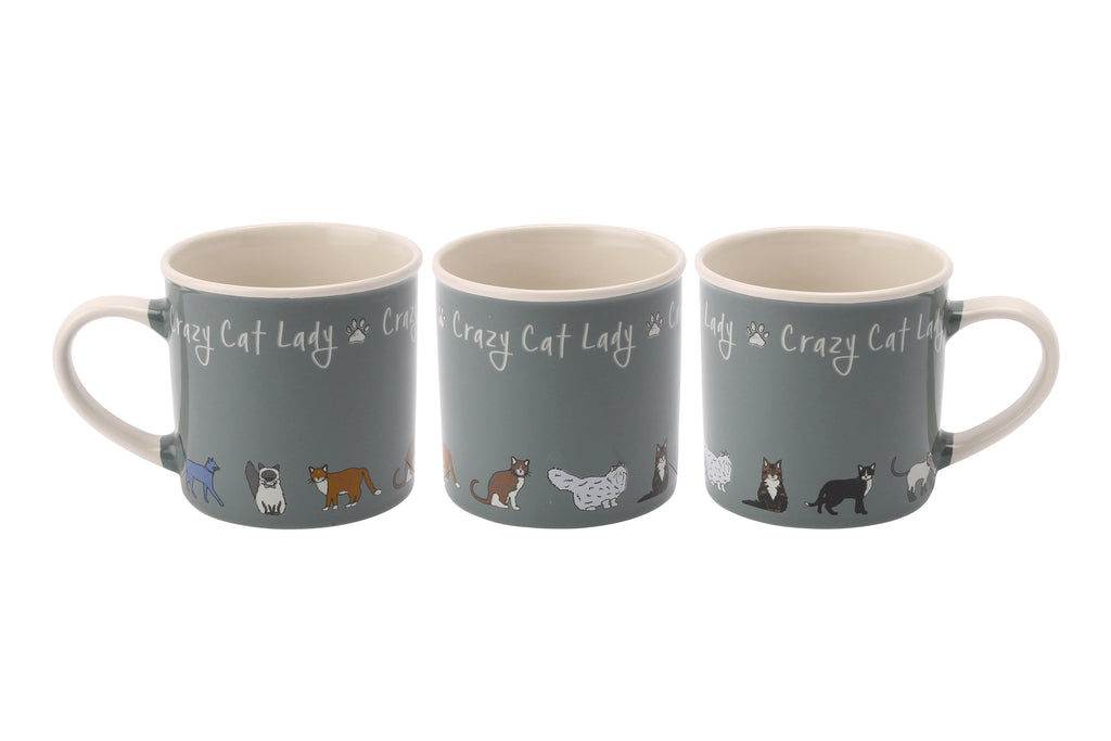 Paws For Thought Crazy Cat Lady Stoneware Mug - Culzean Gifts