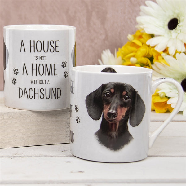 House Not Home Mug - Dachshund