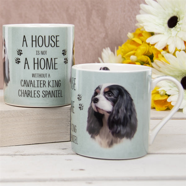 House Not Home Mug - King Charles Spaniel