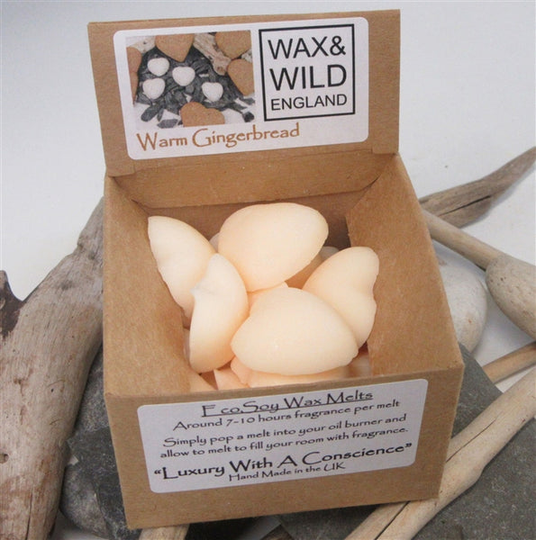 Box of 20 Soy Wax Melts Warm Gingerbread
