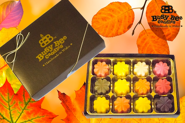 Autumn Wax Tart Selection Box