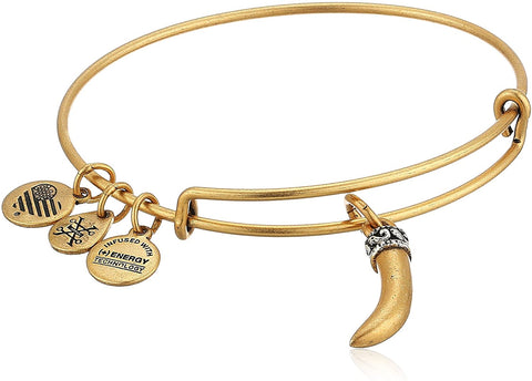 Alex and Ani Horn