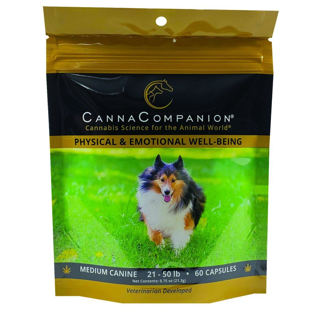 Canna Companion™ Hemp Supplement for Medium Dogs - Regular Strength
