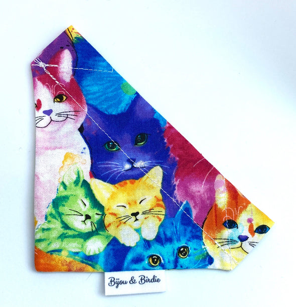 All the Cats of the Rainbow Bandana