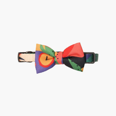 Collar with Bow Tie - Colour Block