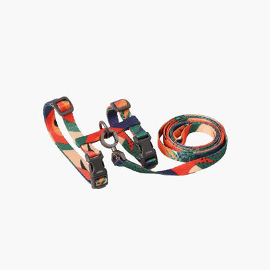 Harness & Leash Set - Colour Block