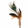 Silver Vine Peacock Feathers Teaser Toy