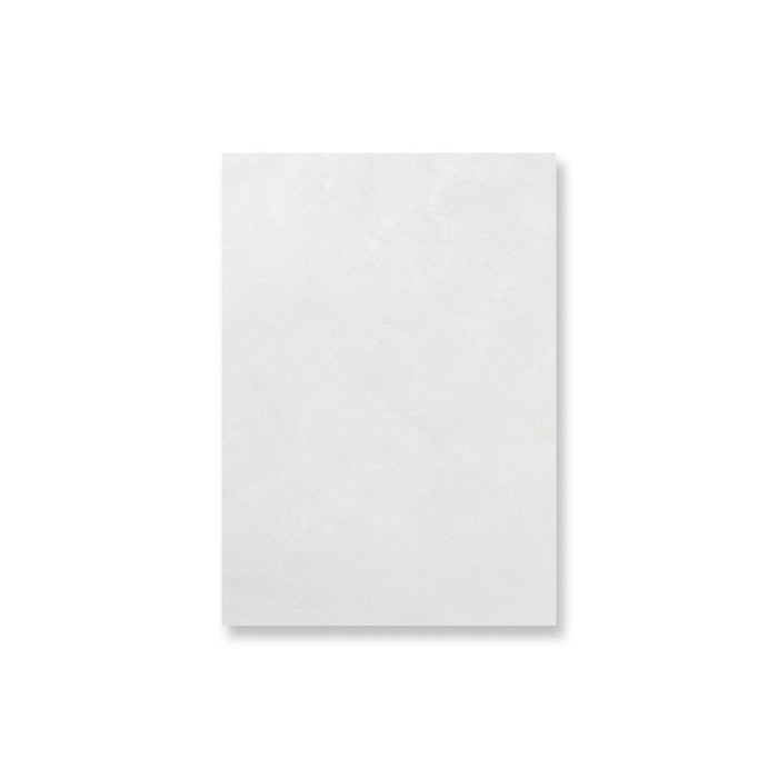 Tyvek C4 Envelopes [Qty 100] 324 x 229mm (4101534089305)