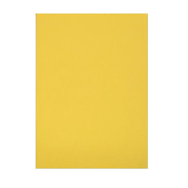 C4 Yellow Board Back Envelopes [Qty 125] 229 x 324mm (2131296583769)