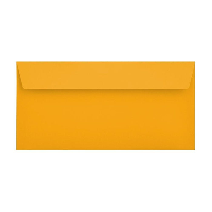 DL Multi Colour Mixed 120gsm Peel & Seal Envelopes (Box 10) [Qty 250] 114 x 229mm (2131461242969)