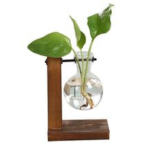 Load image into Gallery viewer, Terrarium Hydroponic Plant Vases Vintage Flower Pot Transparent Vase Wooden Frame Glass Tabletop Plants Home Bonsai Decor