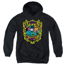 Load image into Gallery viewer, Dc - Appearing Tonight Youth Pull Over Hoodie