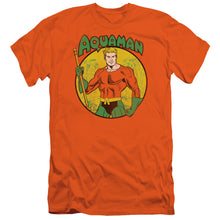 Load image into Gallery viewer, Dc - Aquaman Short Sleeve Adult 30/1