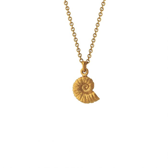 Small Ammonite necklace