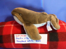 Pacific Life Humpback Whale Plush