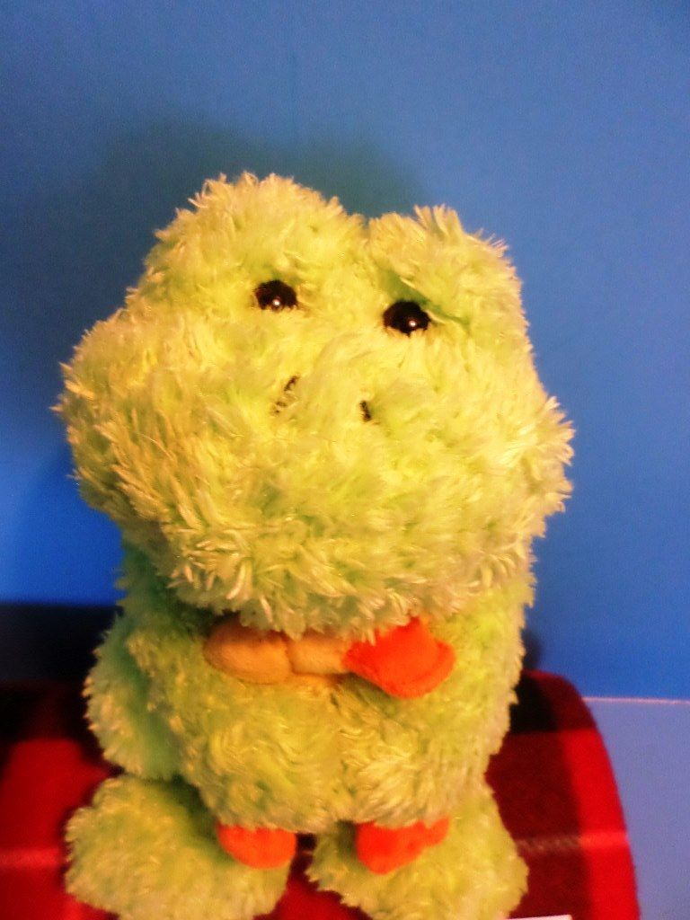 Gund Nursery Rhyme Green Frog and Duck Plush