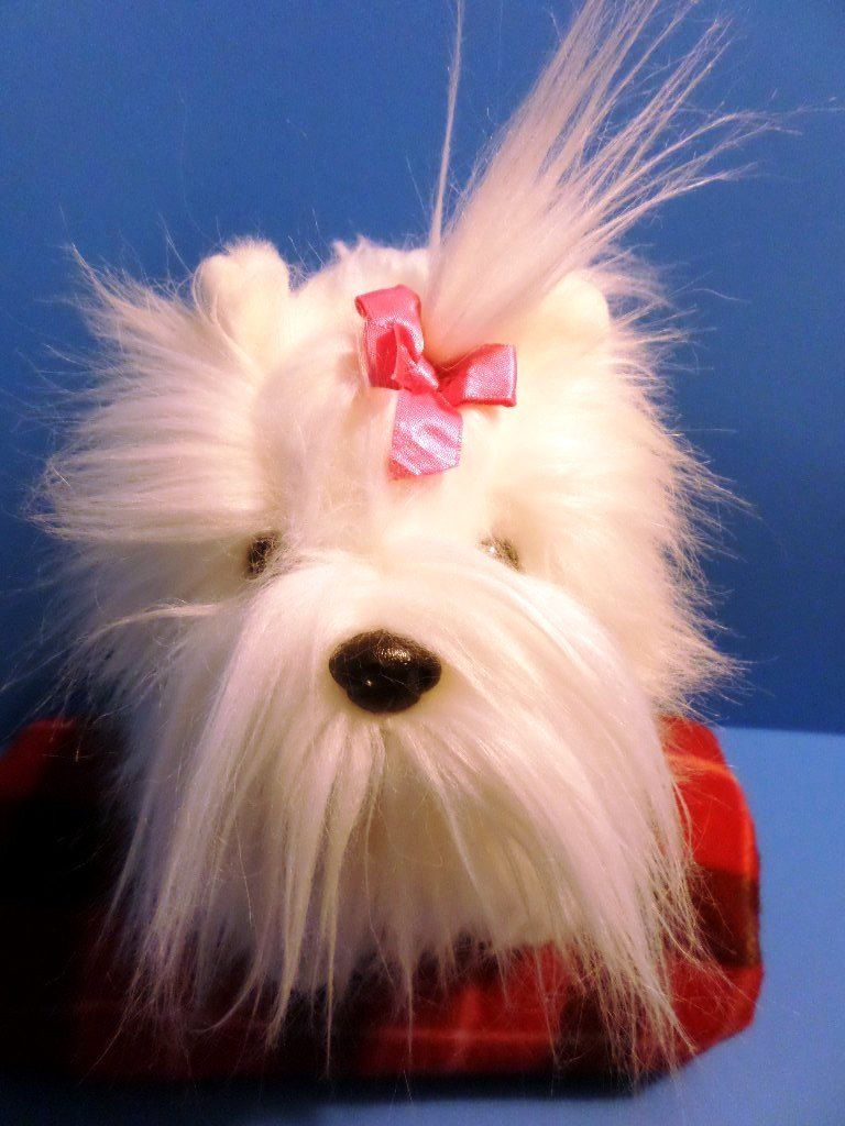 Ty Classic Foofie the White Maltese 2004 Beanbag Plush