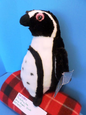 The Petting Zoo African Penguin plush(310-1134-1)