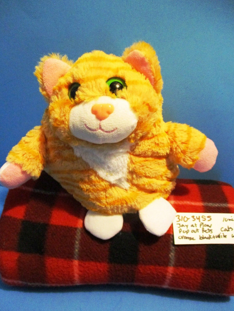 Jay At Play Pop Out Pets Cat 2015 Plush