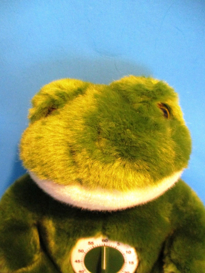 JAAG Time Out Green Frog Plush