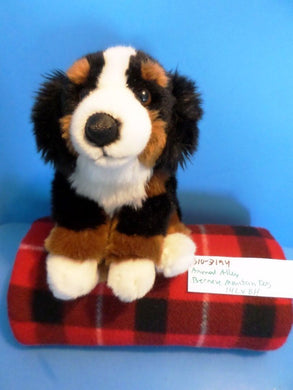 Animal Alley Bernese Mountain Dog beanbag plush(310-3194)