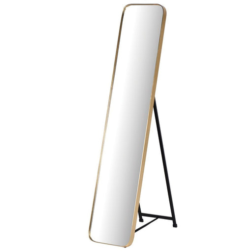 Gold Frame Tall Floor Standing Mirror
