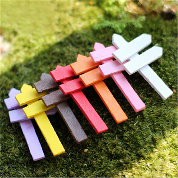 10 Color Palisade Bryophyte Micro Landscape Multi Flesh Wood Craft Decoration