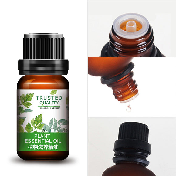 Plant Essential Oil for Body Care Skin Nourishing
