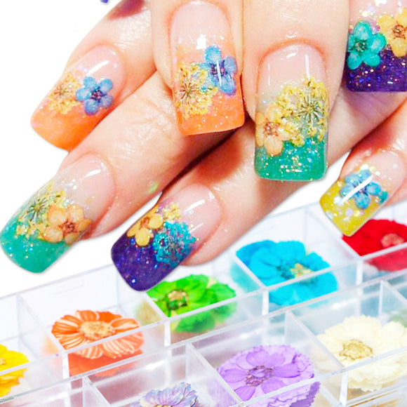 12 Color Dried Flower Nail Art Ornament Filled With Star Sunflowers