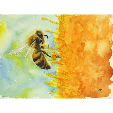 "Unframed Print - ""Foraging Honeybee"""