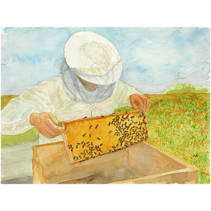 "Unframed Print - ""Hive Expansion"""