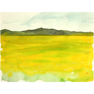 "Unframed Print - ""Super Bloom Number Four, Carrizo Plain"""