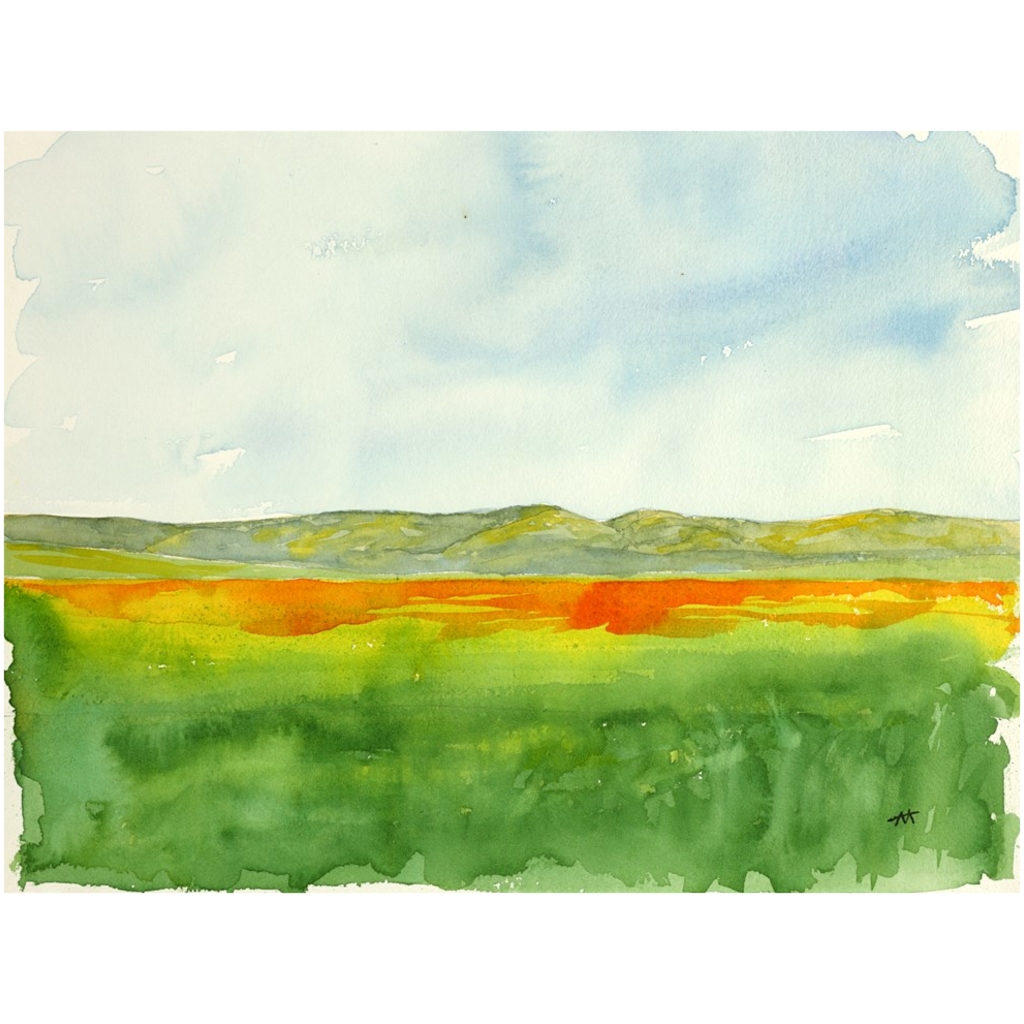 "Unframed Print  - ""Super Bloom Number Two, Carrizo Plain"""