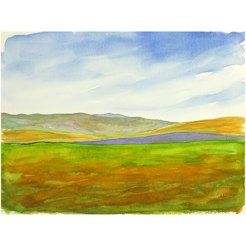 "Unframed Print  - ""Super Bloom Number One, Carrizo Plain"""