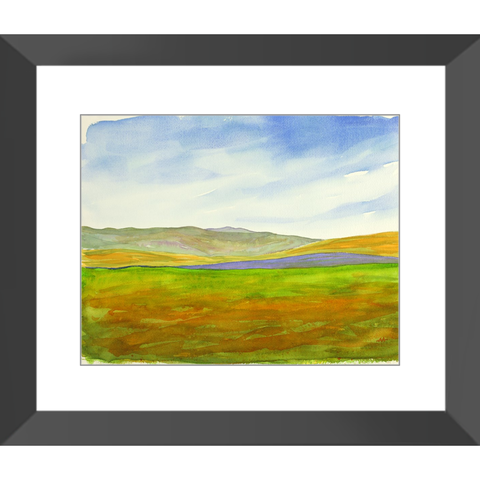 "Framed Art Print - ""Super Bloom Number One, Carrizo Plain"""
