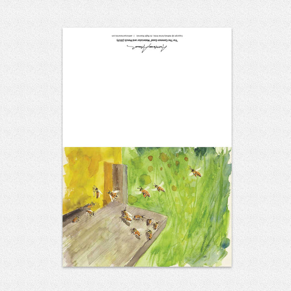 "Box of 10 Note Cards - ""For The Common Good"""