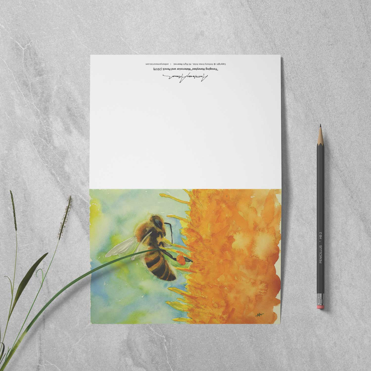 "Box of 10 Note Cards - ""Foraging Honeybee"""