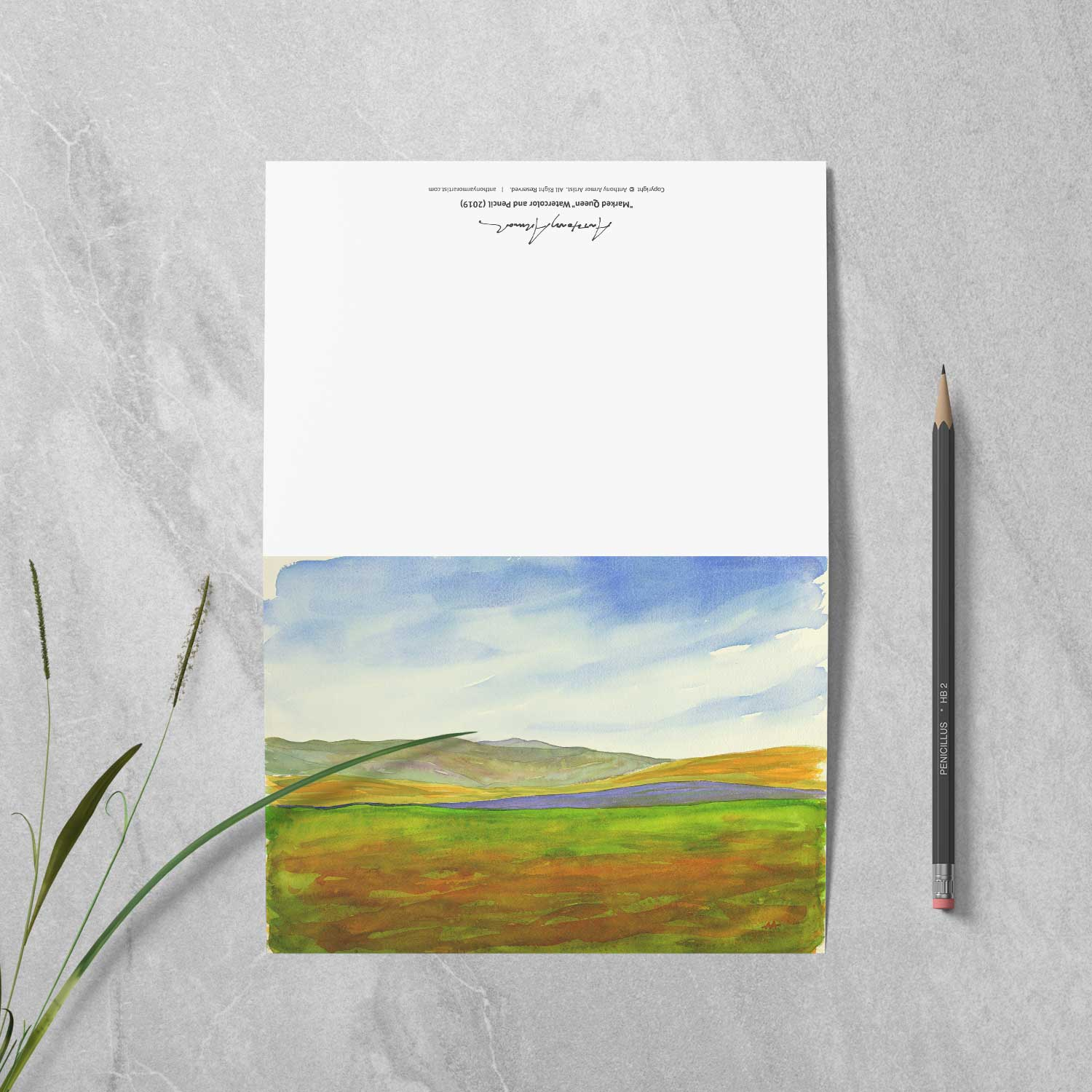 "Box of 10 Note Cards - ""Super Bloom Number One, Carrizo Plain"""