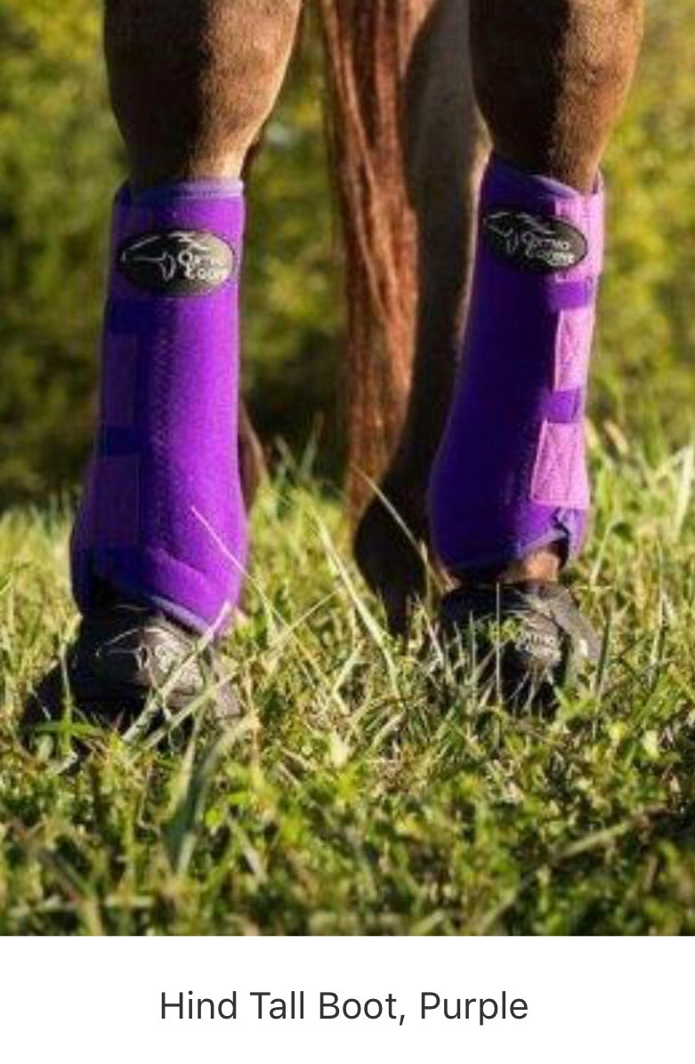 PURPLE - Ortho Equine Boots with Sass Straps SET 4 - Rawhide Western Wear