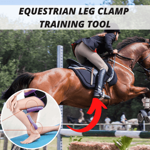 Equestrian Leg Clamp Trainer
