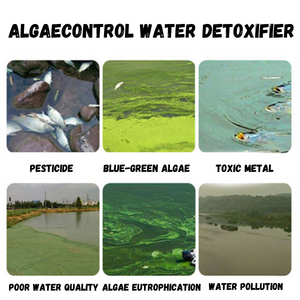 WaterDetox + Algae Control Tablets