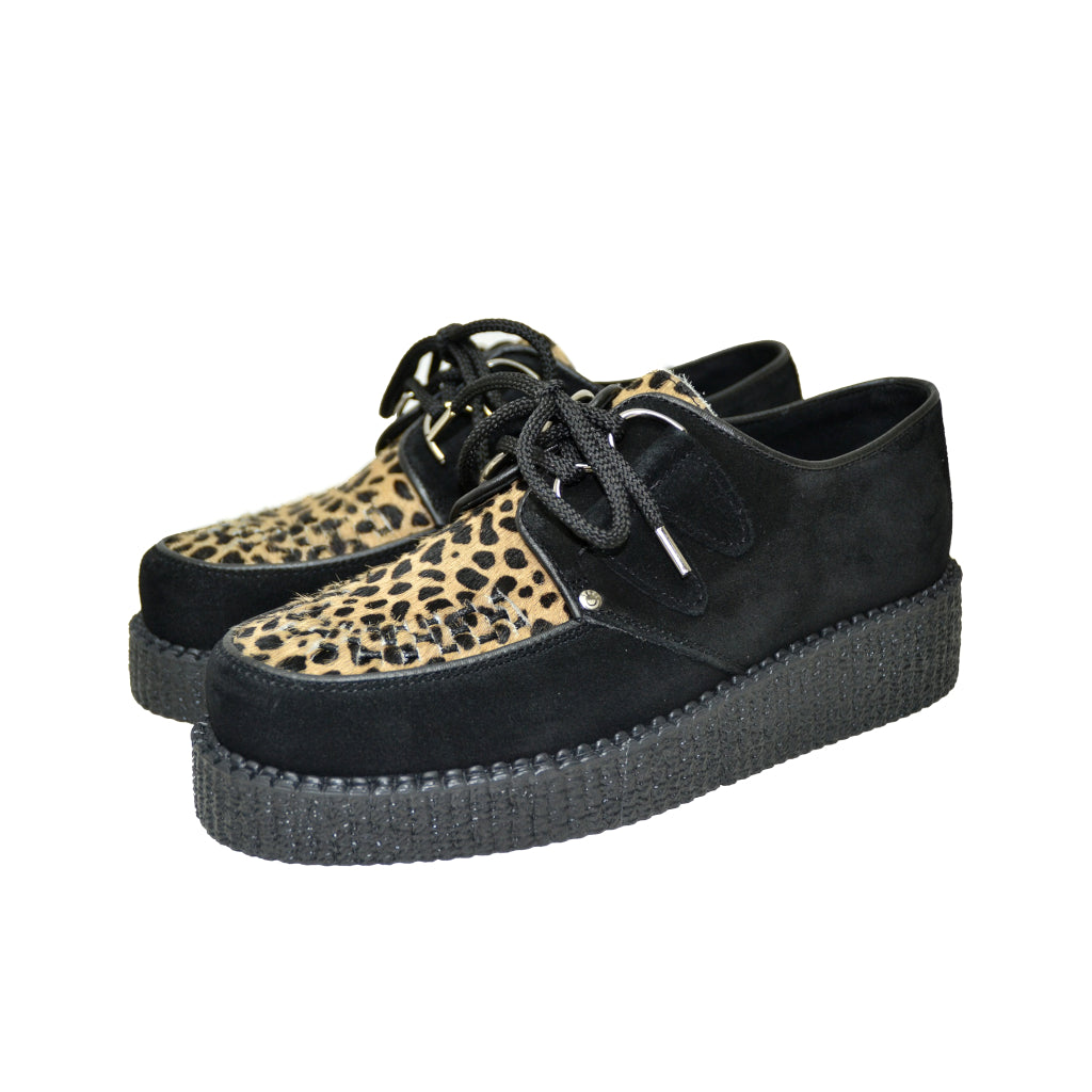 Creepers Black Suede, Capucino Leopard