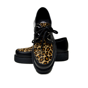 Creepers Black Box and Wildcat Capucino