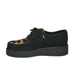 Creepers Black Suede and Camel Wildcat