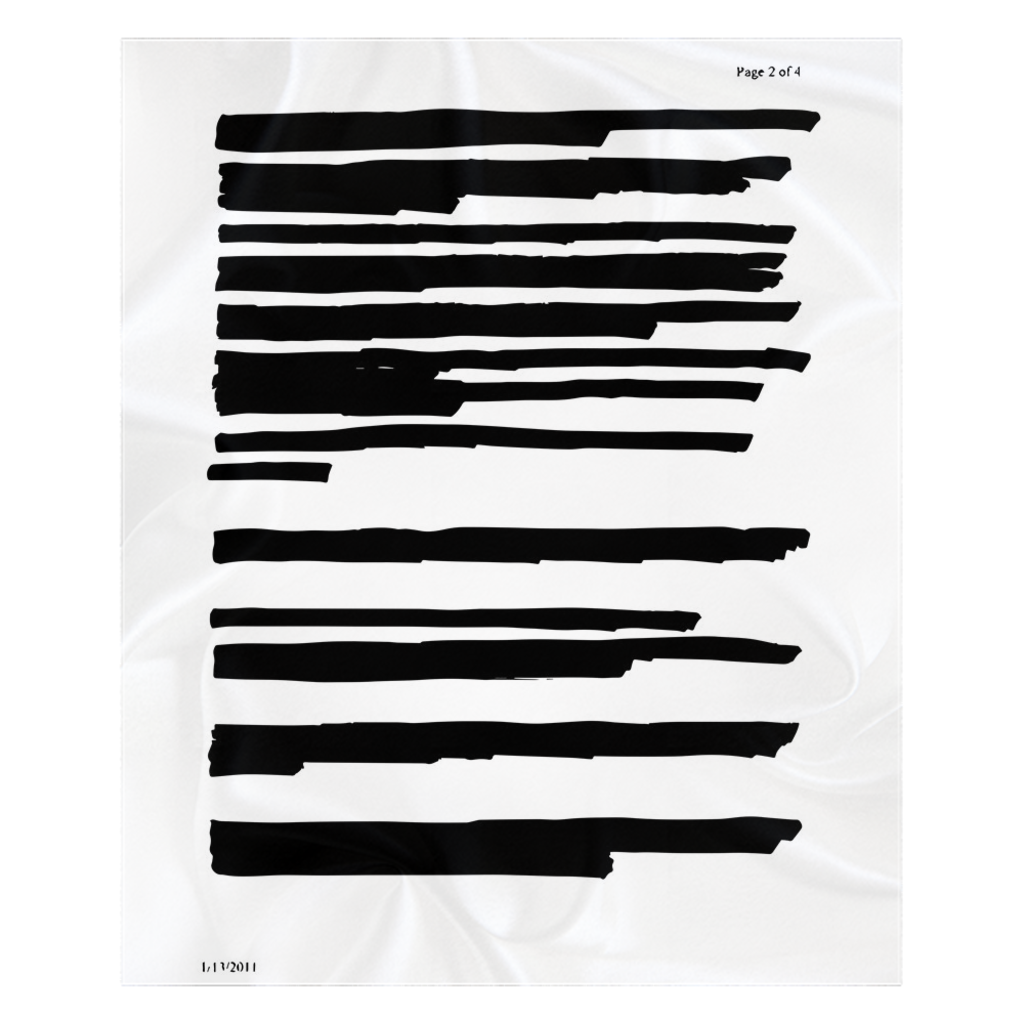 Redacted Fleece Sherpa Blanket